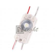 Модуль с линзой 2835-1 12V IP65 White